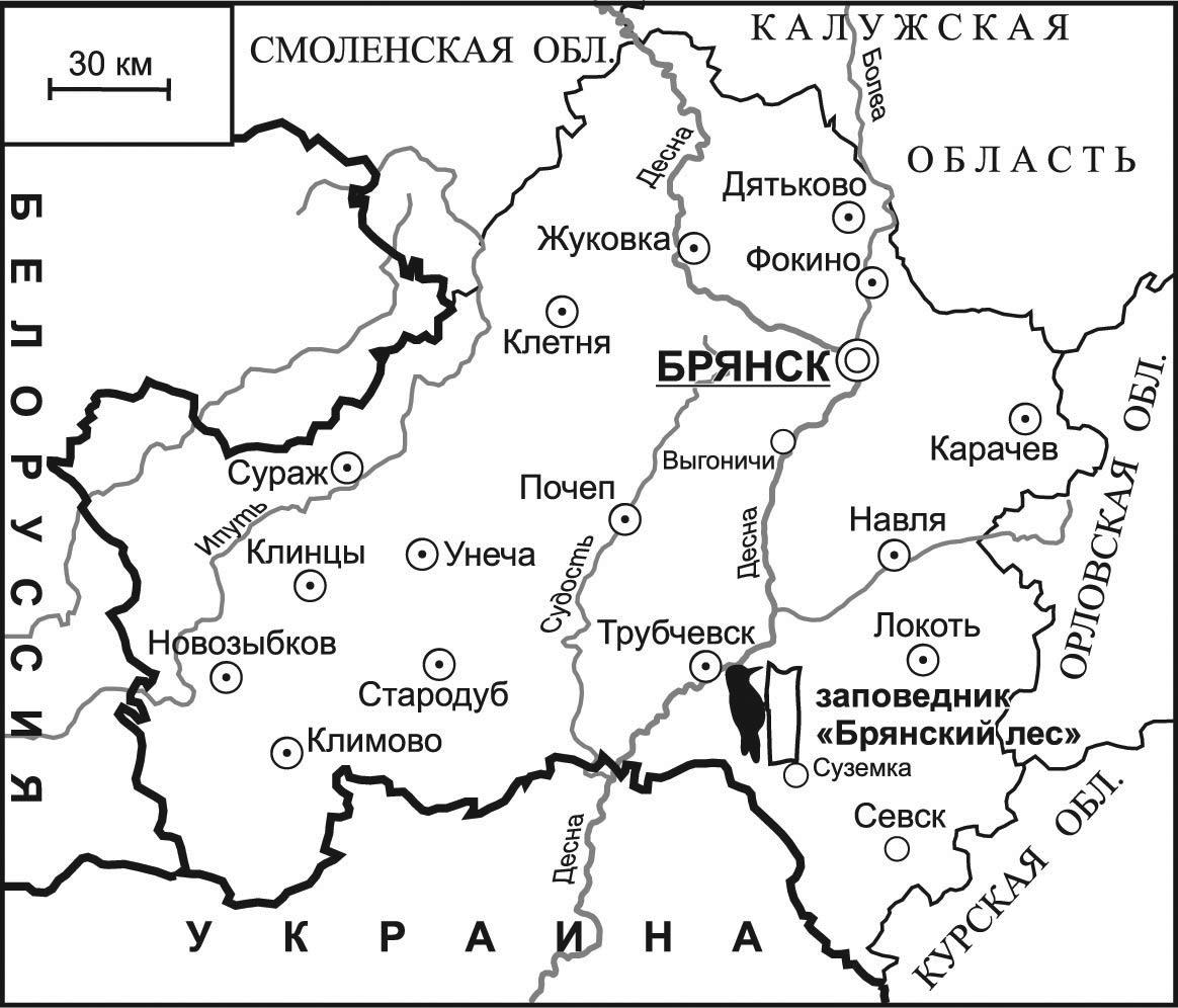 Биосферный заповедник брянский лес